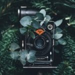 Choosing the Correct Lens for Nude Photography