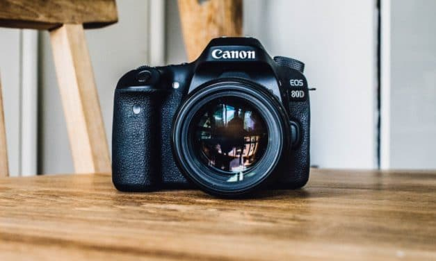 The Ideal Digital Camera for Family Photographers