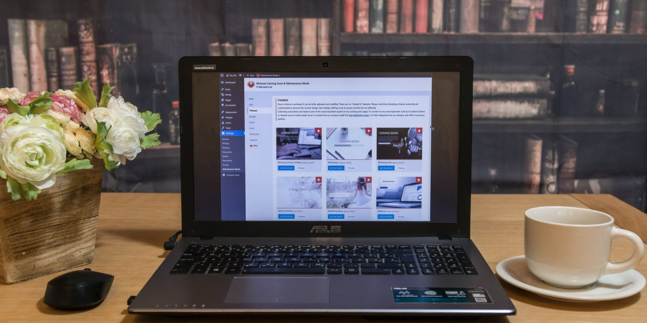 Bluehost Review (Website Hosting Provider)